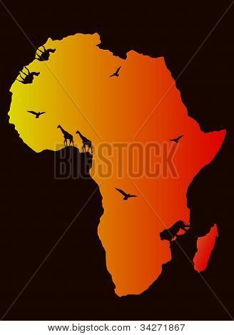 vector background Africa map and animals