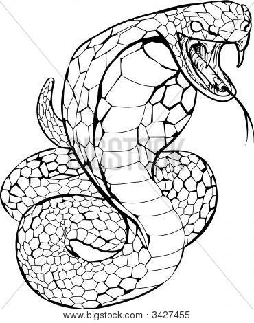 眼睛蛇的简笔画步骤