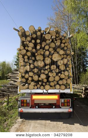 Loaded Timber
