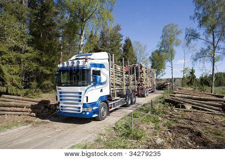 Camiones con madera