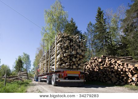Truck With Timber