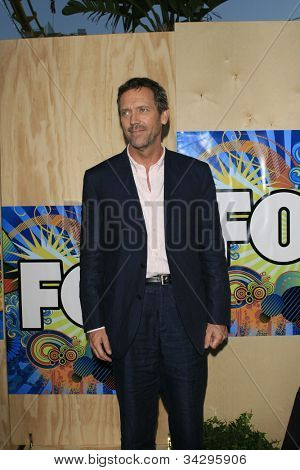 SANTA MONICA, CA - JUL 23: Hugh Laurie Fox Summer TCA Press Tour All Star Party at the Santa Monica Pier, Santa Monica, California on July 23, 2007