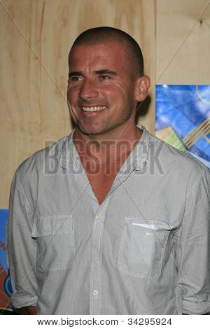 SANTA MONICA, CA - JUL 23: Dominic Purcell Fox Summer TCA Press Tour All Star Party at the Santa Monica Pier, Santa Monica, California on July 23, 2007