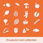 Autumn Icon Collection