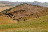 stock photo of semi-arid  - The border between Georgia and Azerbaijan David Gareja Caucasus - JPG