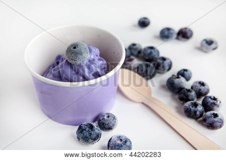 Frozen Creamy Ice Yoghurt  With Whole Blueberries