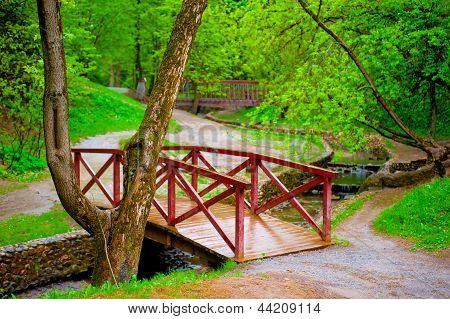 Wooden bridge in green leafy park across the rivulet