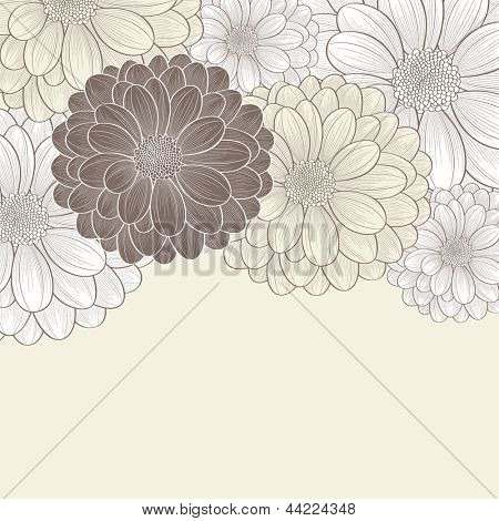 Floral background with flower chrysanthemum. Element for design.