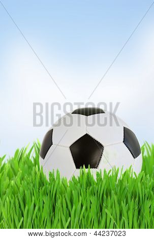 soccer ball in grass close up