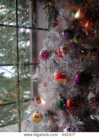 Christmas Tree In Window