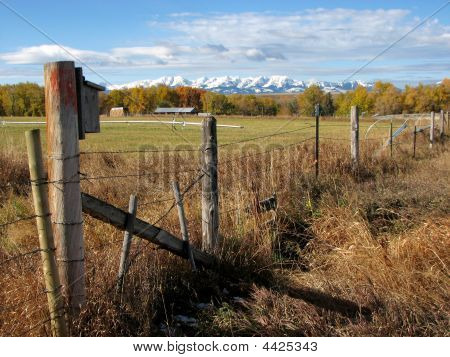 Montana Landscape Photograph With Bluebird House And Snowcapped Mountains
