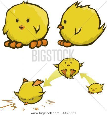 Chick Cartoons