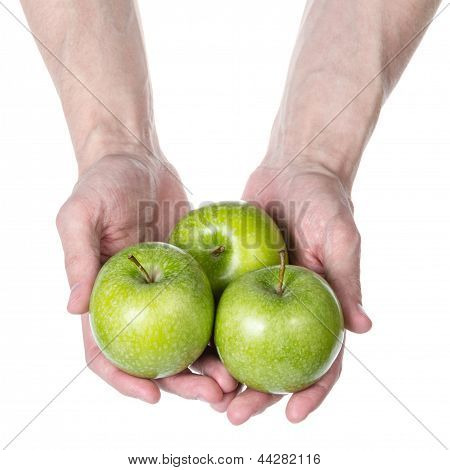 Adult Man Hands Holding Green Apples