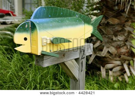 Fun Artistic Mail Box With Fish Shape