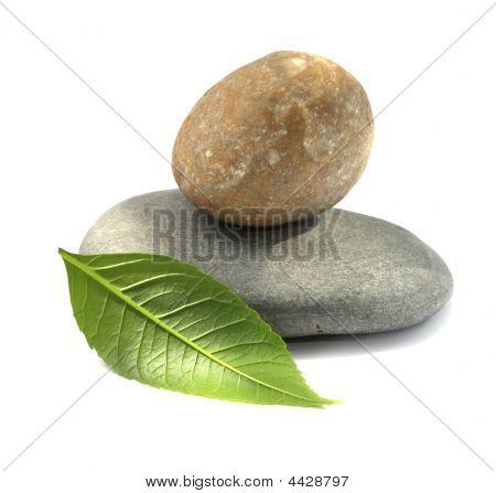 Stone With Leaf