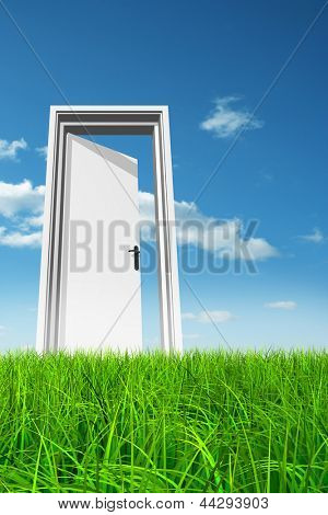 High resolution green, fresh and natural 3d conceptual grass over a blue sky background, a opened door at horizon