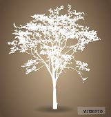picture of nature conservation  - Vector background with abstract tree - JPG