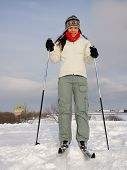 picture of nordic skiing  - Cross country skiing on the Plains of Abraham  - JPG