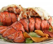 stock photo of lobster  - Grilled Lobster Tail  With Asparagus  - JPG