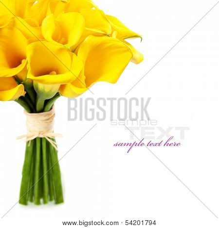 Beautiful Calla Lilly  Bouquet (wedding or romantic date concept )