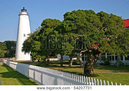 Lighthouse And Tree