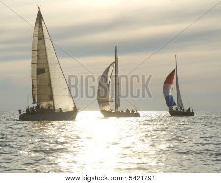 Sunset Yacht Race