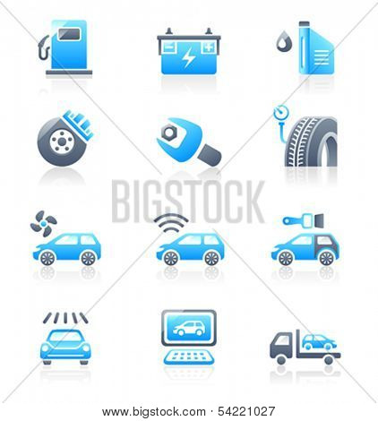 Car care, tuning, repair, and more service icons in blue-gray