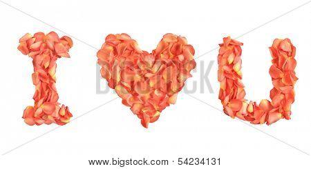 I Love U Rose Petals