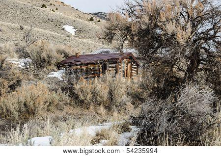 Cabins Nearly Hidden by Sagebrush