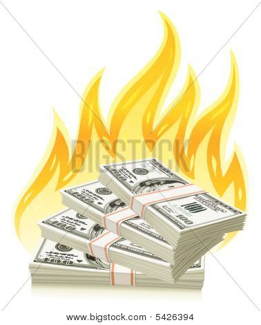 Burning Dollars - Money Concept