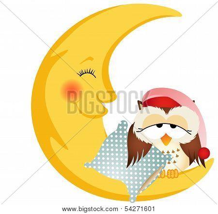 Good night owl sitting on a moon