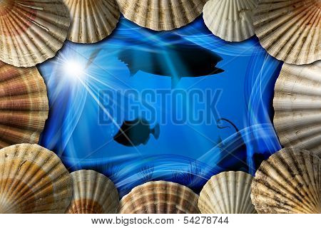 Seashells On Sea Abyss Background