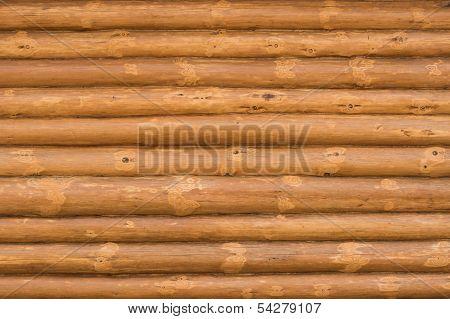 Wall of chopped wood.