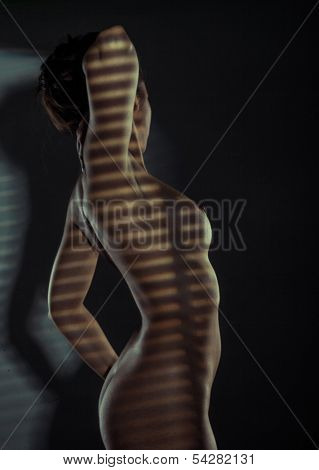 Sexy naked woman standing in striped shadow with her hands on her waist and her naked breast and nipple in profile against the darkness with copyspace