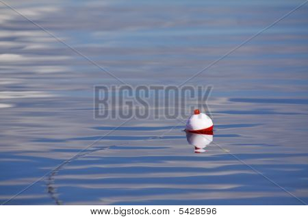 Fishing Bobber Scene
