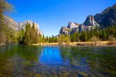 stock photo of sequoia-trees  - Yosemite Merced River el Capitan and Half Dome in California National Parks US - JPG