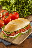 image of salami  - Homemade Italian Sub Sandwich with Salami Tomato and Lettuce - JPG