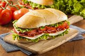 picture of tomato sandwich  - Homemade Italian Sub Sandwich with Salami Tomato and Lettuce - JPG