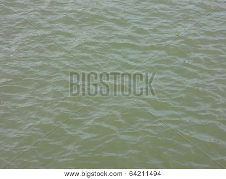 Olive Green Water Of Oakland Harbor