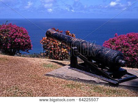 Old gun overlooking sea, Tobago.
