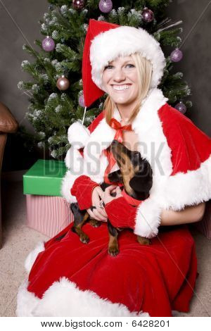 Santa Helper With Dog
