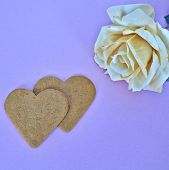 foto of sweetheart  - a couple of sweethearts and a fake rose flower - JPG