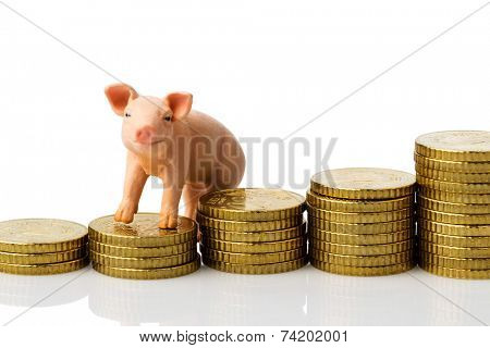 a pig standing on a pile of coins. rising feed costs in agriculture. diminishing returns for pork