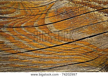 Orange Painted Rift Wood