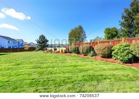Backyard Land With Decorative Bushes And Lawn
