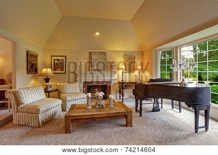 Luxury Family Room With Grand Piano And Fireplace