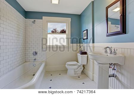 White And Blue Bathroom Interior