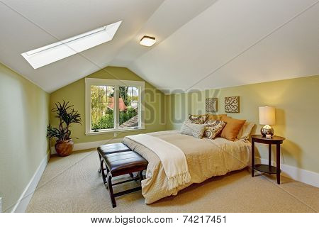 Bedroom Interior With Vaulted Ceiling And Light Mint Walls