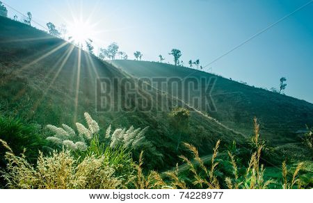 Sunbeam And Soft Mist Over Country Hill Landscape