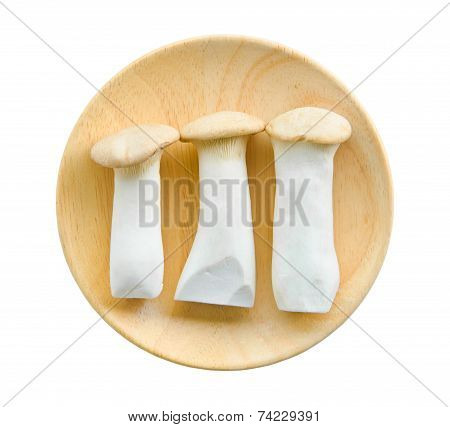King Oyster Mushrooms (pleurotus Eryngi).